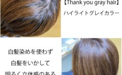 明るい白髪染めハイライトグレイカラー|福岡薬院アールヘア